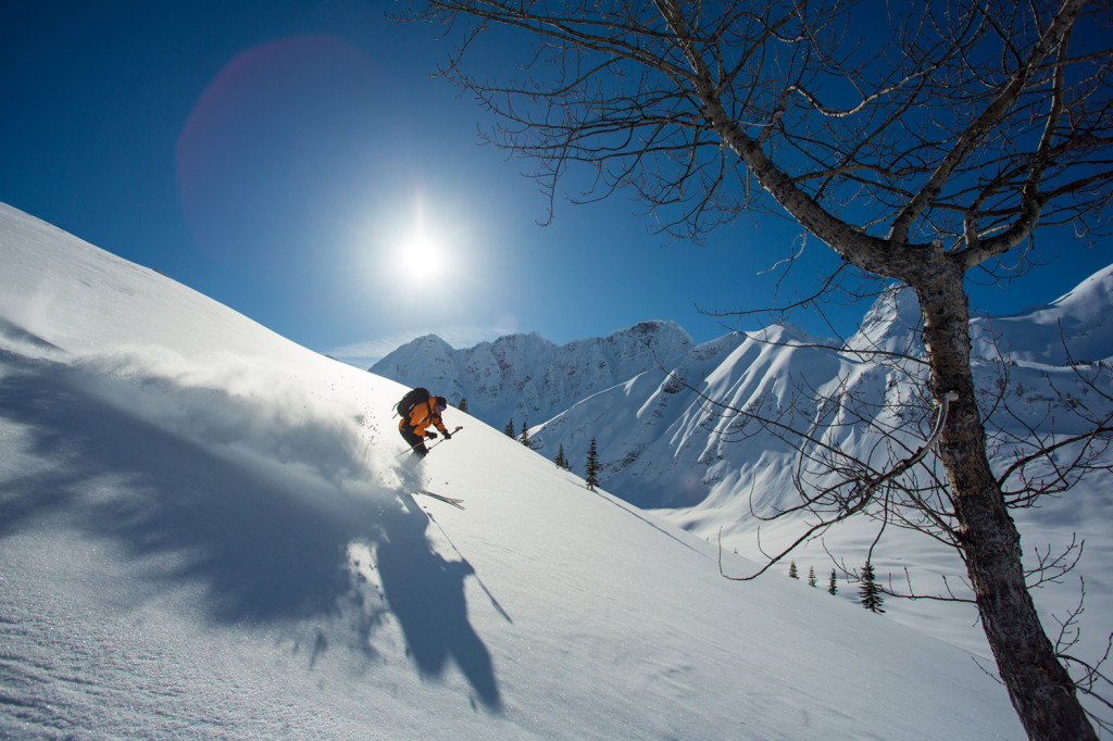 No singles' lines here...tree skiing on the Last Frontier Photo - Caton Garvie