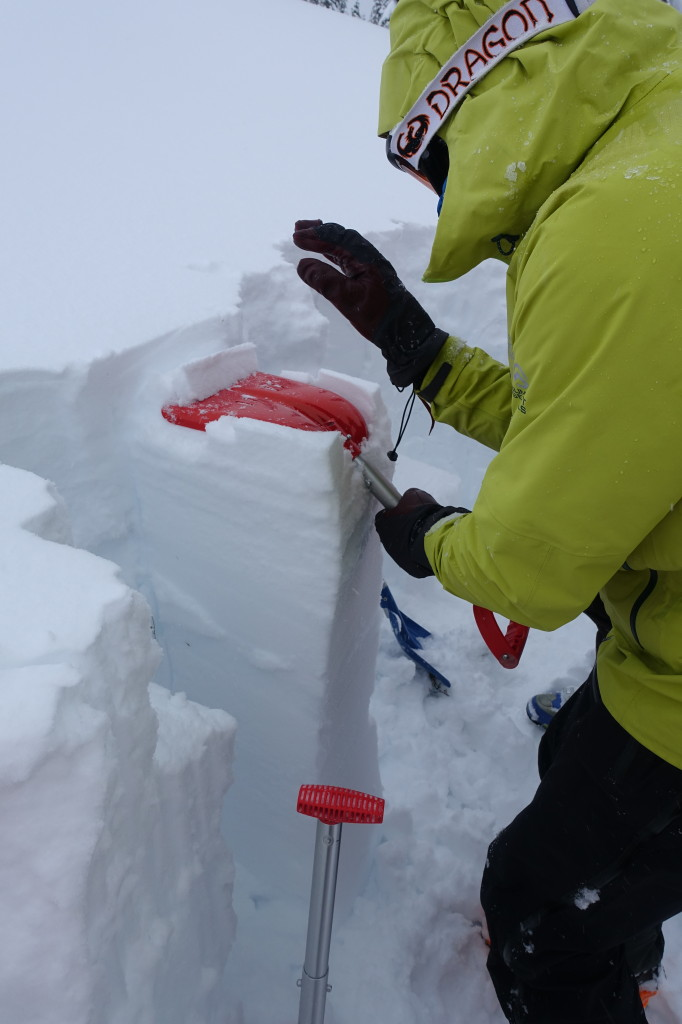 Doing a tap test to check snow stability and see where the weak layers are and how much force is required to have them fail | Photo Liam Harrap
