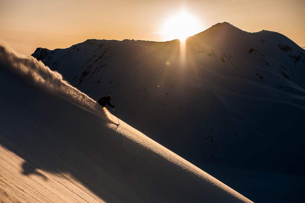I'll take this over tree bashing any day of the week | Reuben Krabbe