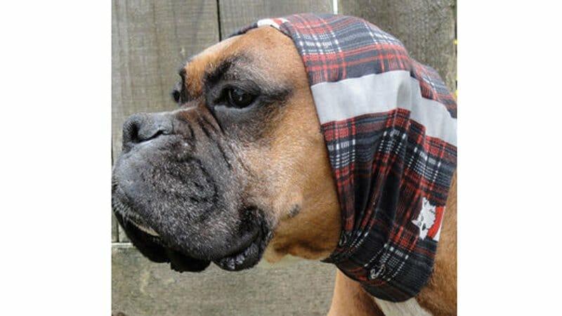 They even make a Dog Buff, for your canine companion. Photo - Buff USA