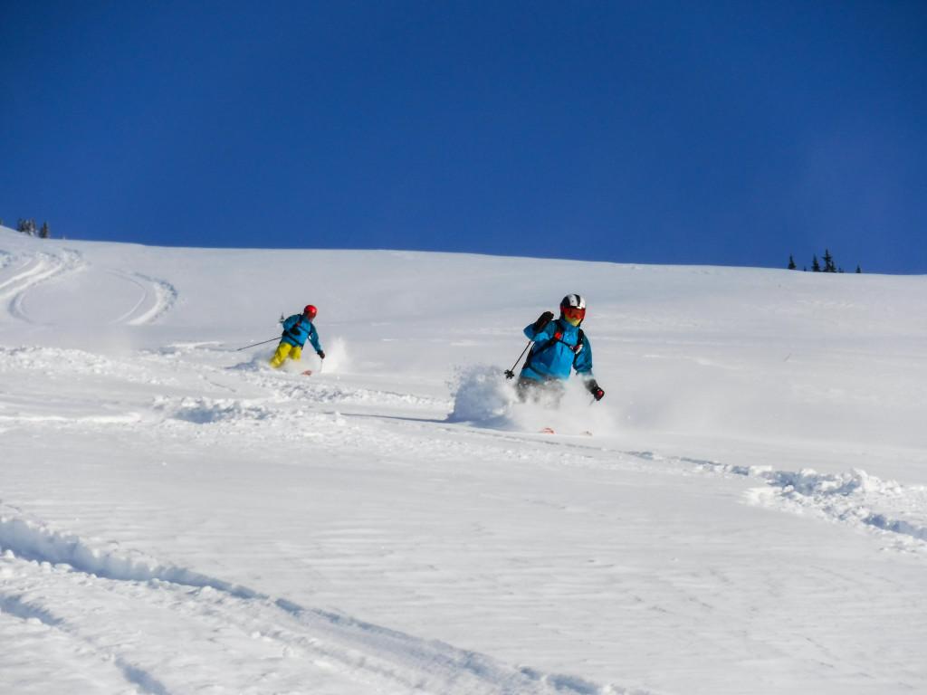 Creamy Alpine this January. Photo - Michael Brackenhofer