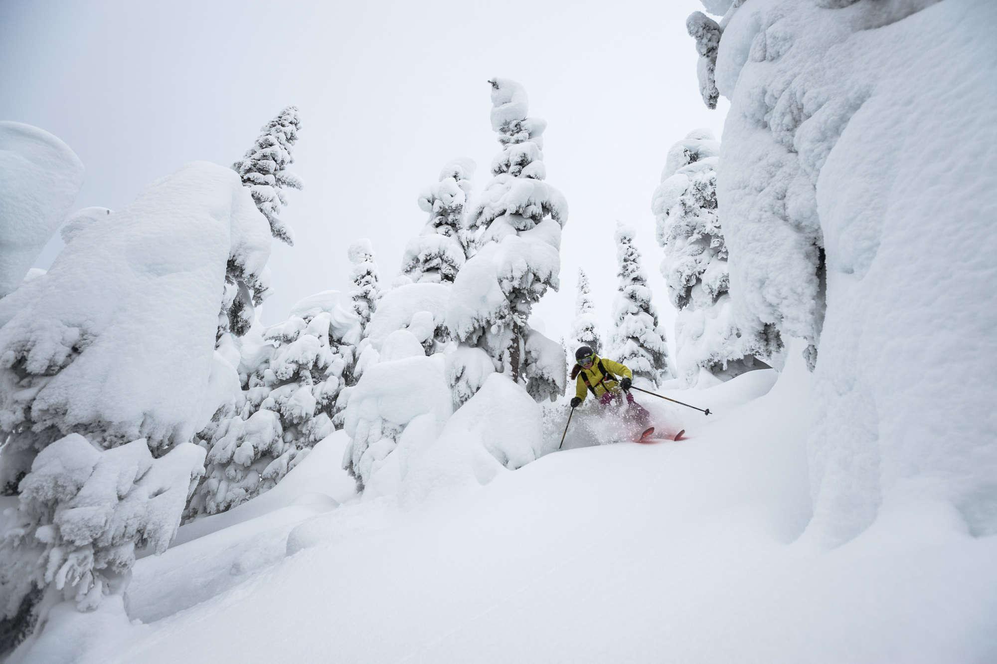 heli ski bc deep powder tree skiing