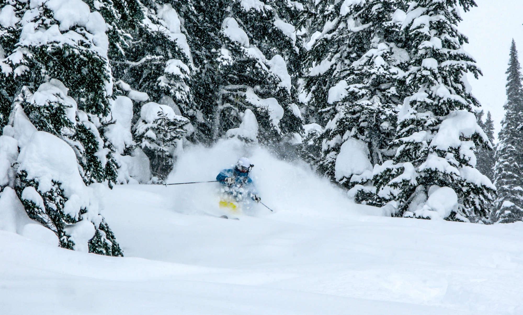 deep BC powder skiing last frontier heli