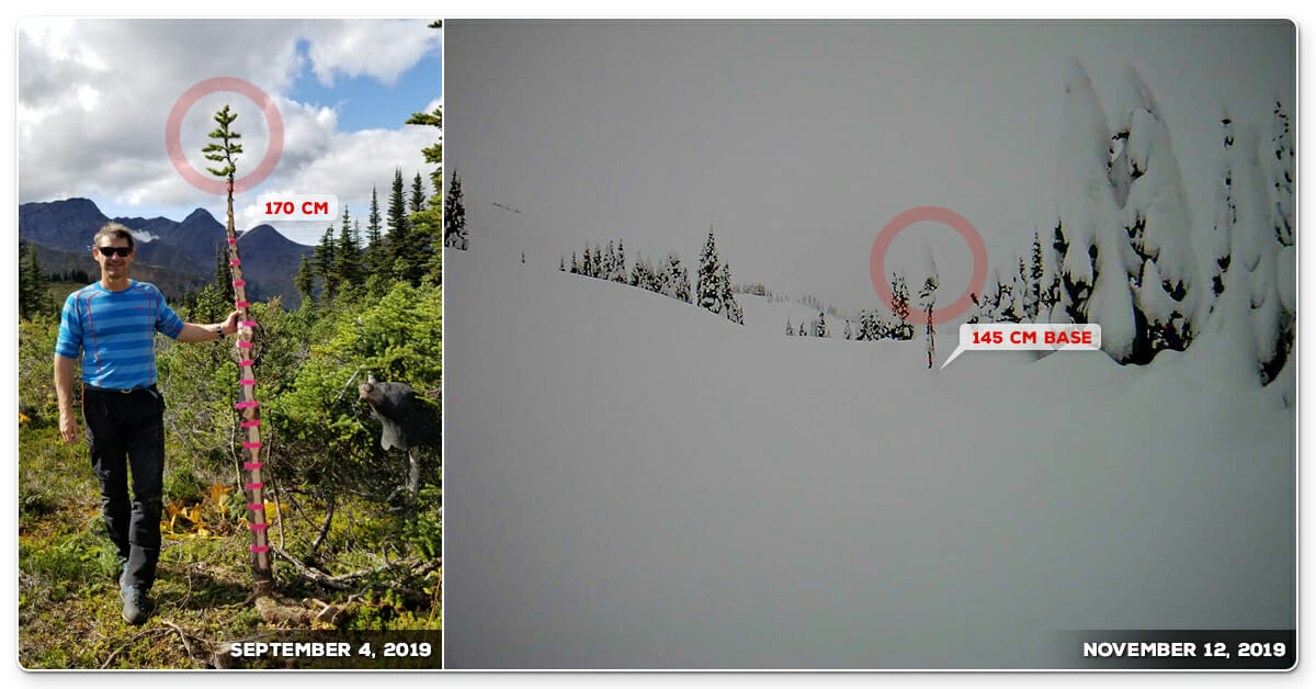 Deep Winter Snowpack Last Frontier Heliskiing November 2019